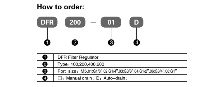 DFR_Series_FRL_How_to_Order